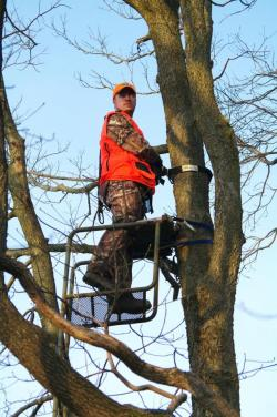 Going Hunting? Think Twice before Climbing That Deer Stand | Georgia