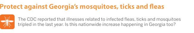 LWG_Blog_Mosquito.jpg
